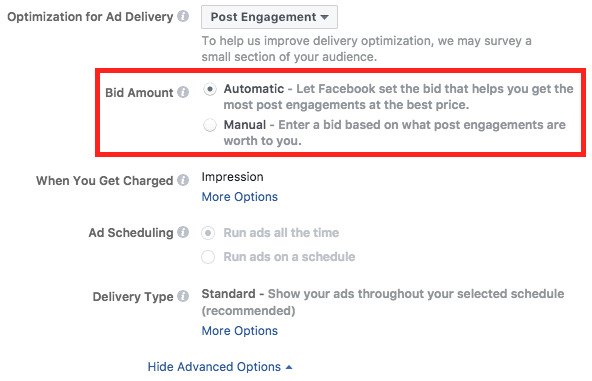 facebook-advanced-options-bidding